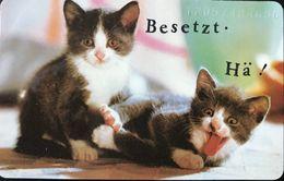 ALLEMAGNE  -  Cats  -  Whiskas  -  20 DM - Deutschland