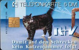 ALLEMAGNE  -  Cats  -  R+V  -  6 DM - Deutschland