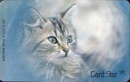 ALLEMAGNE  -  Cats  - Herrenlose Tiere  -  6 DM - Deutschland