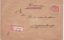 Germany-1925 50 Pf Orange On Walderbach Registered Letter Cover To Regensburg - Deutschland