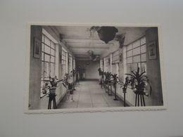 LEUVEN: Zusters Franciskanessen Van Het H. Hart Nr 35 - Verbindingsgang Tussen Klooster En Kliniek - Leuven