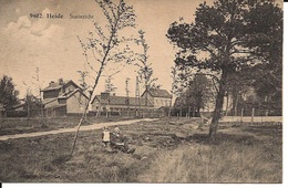 19  Kalmthout Heide  Statiezicht  Hoelen 9402 - Kalmthout