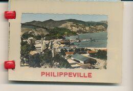Philippeville --  Ladycap -- 10 Photos  -- 8 Cm X 6 Cm - Photos