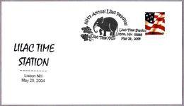 LILAC TIME STATION - ELEFANTE - ELEPHANT. Lisbon NH 2004 - Elefantes