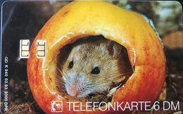 ALLEMAGNE  -  Phonecard  -  Klein Waldmaus  -  6 DM - Deutschland