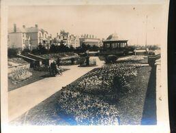 Angleterre -- The Sunken Gardens  , Clacton - On - Sea - Photos