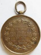 Médaille Championnat De 1889 Prix Société Nationale De Tir Des Communes De France - Francia
