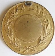 Médaille En Bronze Salon Culinaire Paris 1903, Par Dubois - Francia