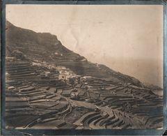 ! 4 Alte Fotos, Photos, Mallorca , Ca. 1909, Islas Baleares - Mallorca