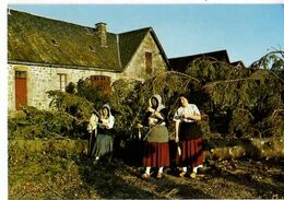 19 EGLETONS Les Compagnons Du Roseau Rosiers - Egletons