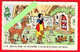 """CPM-Disney- N°4.Decouverte De La Maison Des Nains."""" Blanche -Neige """" Et Les Animaux . - Disney"""