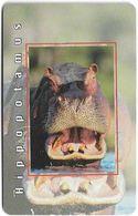 S. Africa - MTN - African Animals - Hippopotamus, R15, Solaic, Cn. Short, 1999, 100.000ex, Used - Afrique Du Sud