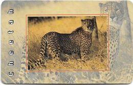 S. Africa - MTN - African Animals - Cheetah, R15, Solaic, Cn. Short, 1999, 100.000ex, Used - Afrique Du Sud