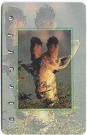 S. Africa - MTN - African Animals - Giraffe, R15, Solaic, Cn. Long, 1999, 100.000ex, Used - Afrique Du Sud