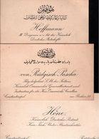 ! Lot Von 17 Visitenkarten Türkei, Konstantinopel, Constantinople - Visitenkarten