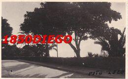 REGGIO CALABRIA - PANORAMA ( 2 ) FOTO PRIVATA LEDO F/PICCOLO VIAGGIATA - Reggio Calabria
