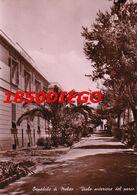 OSPEDALE MELITO - VIALE ANTERIORE DEL PARCO VIAGGIATA 1950 - Reggio Calabria