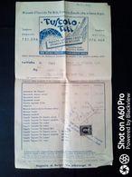 FATTURA TUSCOLO TITI (VINO IN FIASCHI) - FRASCATI (ROMA) - 1956 - Italy