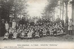 27 Kalmthout Heide Diesterwegs In 't Bosch Schoolvilla Diesterweg. Hoelen 6420 - Kalmthout