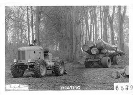 Thème  Automobile   Tracteur Saviem Transportant Du Bois  Photo    14.5x10.5  (voir Scan) - Camion, Tir