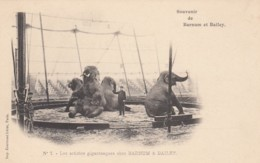 Barnum & Baily Circus, 'Giant Artists' Elephants Perform C1900s Vintage Postcard #7 - Circus
