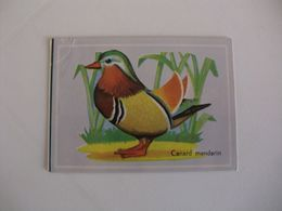 Bird Canard Mandarin Portugal Portuguese Pocket Calendar 1987 - Calendriers