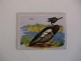 Bird Harle Portugal Portuguese Pocket Calendar 1987 - Calendriers