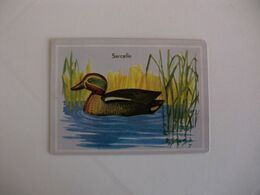 Bird Sarcelle Portugal Portuguese Pocket Calendar 1987 - Calendriers
