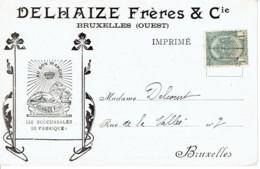 Carte Postale Illustrée Lion Delhaize Freres  Bruxelles Ouest Café Torrefié Caracoli Vue De Spa Verso - 1900 – 1949