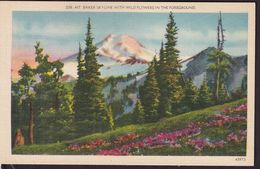 Postcard - USA - Circa 1940 - Mt. Baker Skyline With Wild Flowers In The Foregroud - Non Circulee - A1RR2 - Etats-Unis