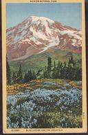 Postcard - USA - Circa 1940 - Rainier National Park - Non Circulee - A1RR2 - Etats-Unis