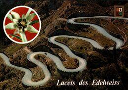 Vallée D'aure Route De St Lary Cap De Long Lacets Des Edelweiss  CPM Ou CPSM - Non Classificati