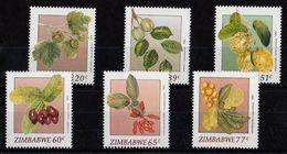 Zimbabwe - UMM Wild Fruit 1991 - Zimbabwe (1980-...)