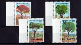 Zimbabwe - UMM National Tree Day 1981 - Zimbabwe (1980-...)