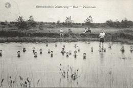 38 Kalmthout Schoolvilla Diesterweg Bad En Zwemmen. Uitgave Hermans !! - Kalmthout