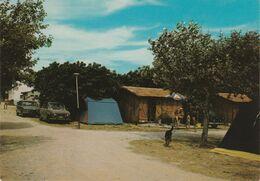 13 LA CIOTAT N°255/617 Camping Du Soleil Rte De Marseille Restaurant En 1976 Renault 4L R16 Chien Boules Pétanque - La Ciotat