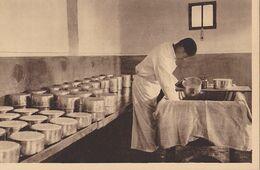 ROQUEFORT  Laiterie  La Fabrication Du Fromage - Roquefort