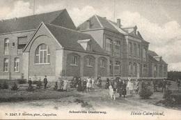 49  Kalmthout Heide Schoolvilla Diesterweg Uitgave Hoelen 3247 - Kalmthout