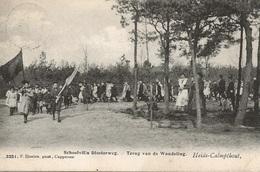 50  Kalmthout Heide Schoolvilla Diesterweg Terug Van De Wandelling Uitgave Hoelen 3251 - Kalmthout