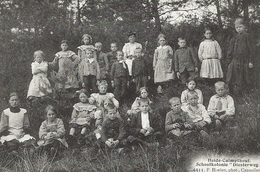 51  Kalmthout Heide Schoolvilla Diesterweg Kinderen In Het Bos Uitgave Hoelen 4411 - Kalmthout