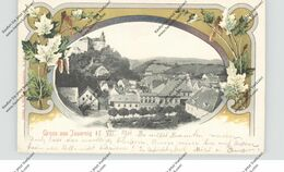 BÖHMEN & MÄHREN - JAUERNIG / JAVORNIK, Dekorative Passepartout-Karte 1901, österr. Bahnpost Heinersdorf - Boehmen Und Maehren
