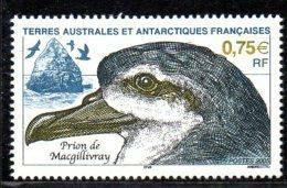 TAAF 0408 Oiseau Prion - Antarctic Wildlife
