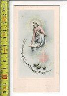 KL 7331 - H. PROFESSIE VAN: ZUSTER MARIE DENISE - LUCIE VAN AUDENHOVE - NEDERBRAKEL 1955 - Images Religieuses