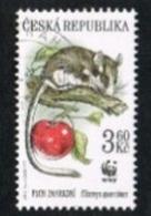 REP. CECA (CZECH REPUBLIC) - YV 108  - 1996 WWF: ENDANGERED ANIMALS (GARDEN DORMOUSE)    -   USED - República Checa