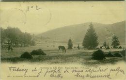 SWITZERLAND - FRIBOURG - MATINEE AU LAC NOIR - SCHWARZ SEE - EDIT E. CHIFFELLE - MAILED 1903 ( BG9405) - FR Fribourg