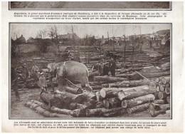 Guerre 14-18   Les Elephants  Hagenbeck Vend Un Elephant Dressé Region Maubeuge - Old Paper