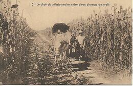 Cpa Chine Agriculture Attelage Missionnaire Dans Champs De Mais - Cina
