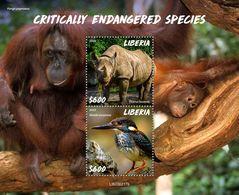 Liberia 2020  Fauna  Critically Endangered Species ,rhino ,orangutan, Kingfisher S202006 - Liberia