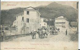 ITALIE  - SERAVEZZA - Veduta Dai Tre Castagni - Italie