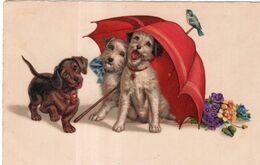 Parapluie Rouge , Trois Petits Chiens ... A.G.B. N° 3296 - Hunde